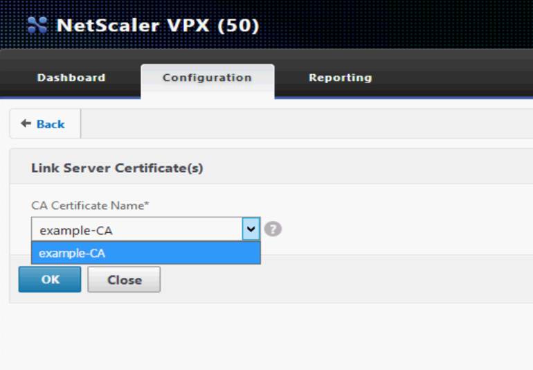 11.2.4.12. Linking of an intermediate certificate and a server ...